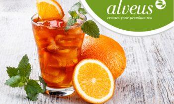 Orange Teatonic
