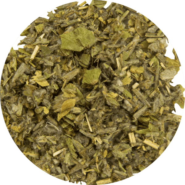 82428 Elixir invernal BIO